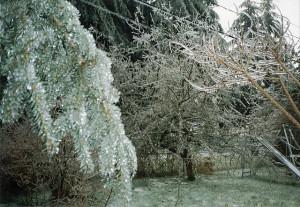 1996-12-26 Ice Storm